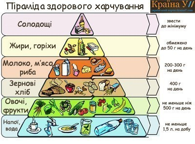 распорядок здорового питания